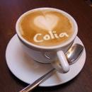 COLIA 圖像