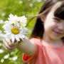 flower66886