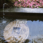 forcy