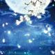 創作者 桜 的頭像