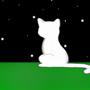 仰望星空的貓