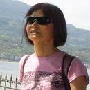 金菊 圖像