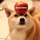 創作者 愛吃吃 Mango 的頭像