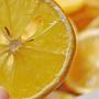 風城橘子皮