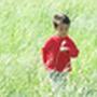 sunnygarden2006