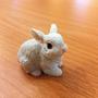 Bunny's blog